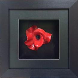Framed Ceramic Poppy by Paul Cummins
