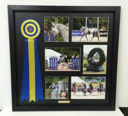 Framed-Horse-Rossette-with-Photographs